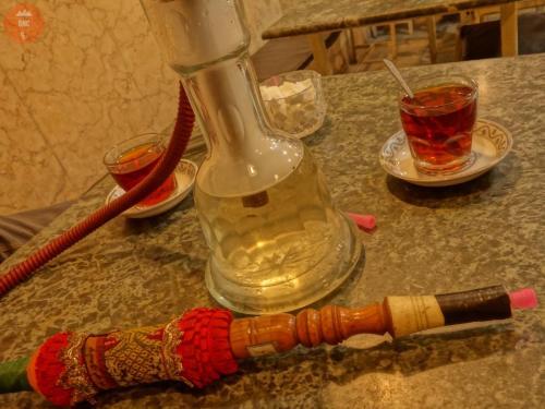 """""""Domácí""""čajka - Teherán"""