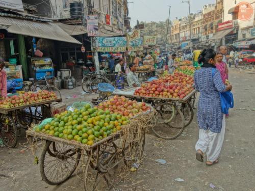 Co hrdlo ráčí - Paharganj- Dillí